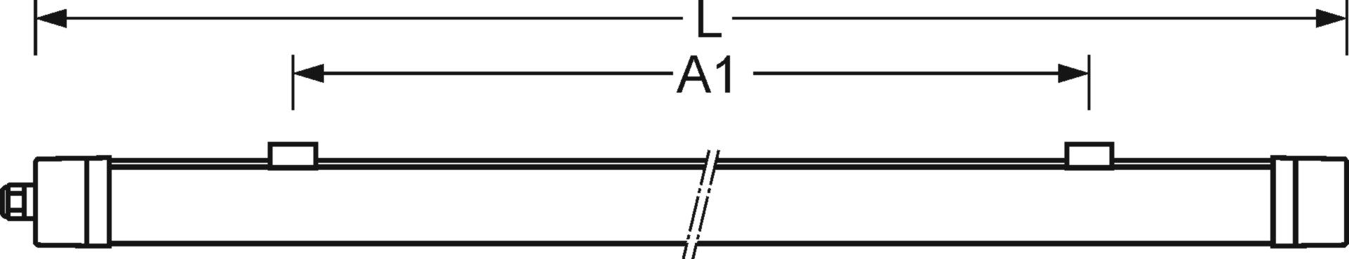 Coupe longitudinale | (L)